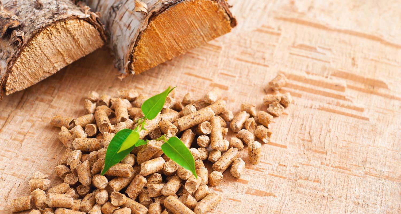 choisir granulé de bois